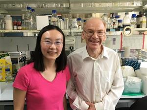 Joanne visited Prof. Peter Scambler in London in June 2017.